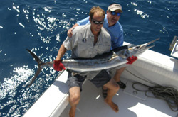 Fishing charters naples florida for Deep sea fishing naples fl